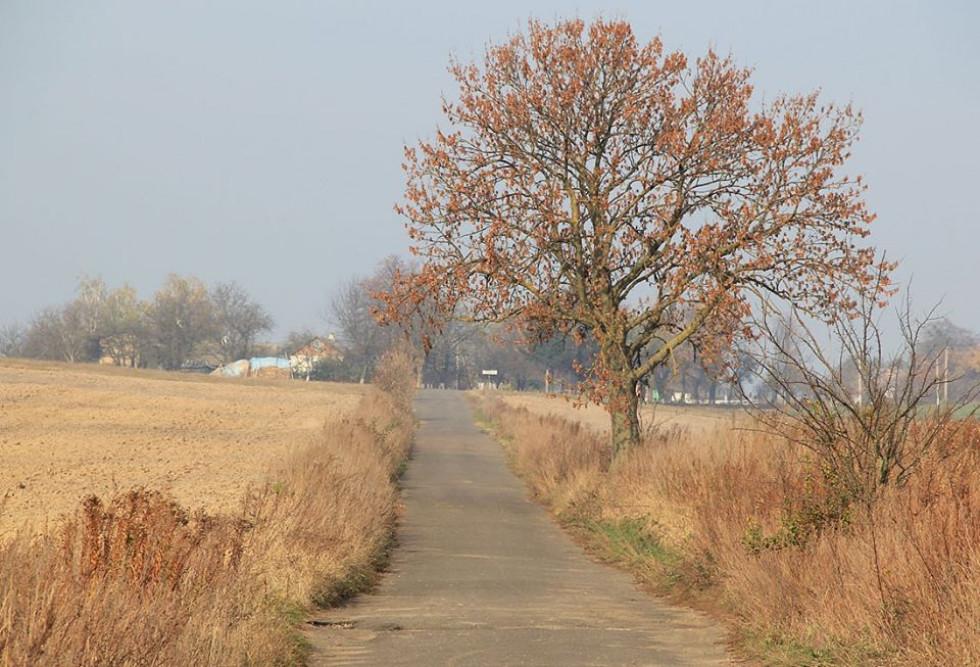 Дорога в Підбрусин